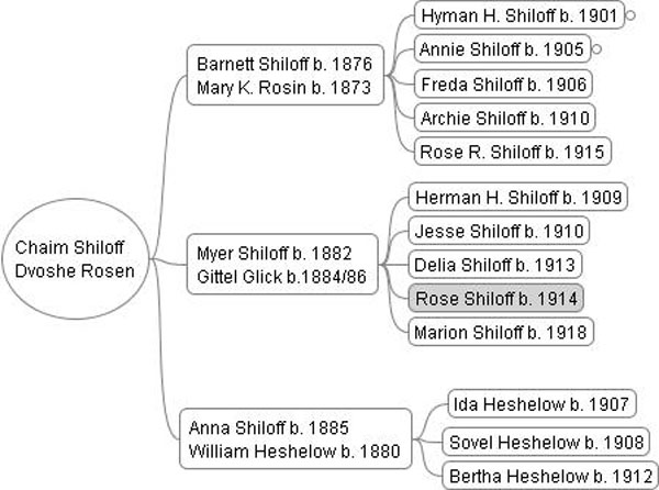 Chart showing the 3 generations descending from Chaim